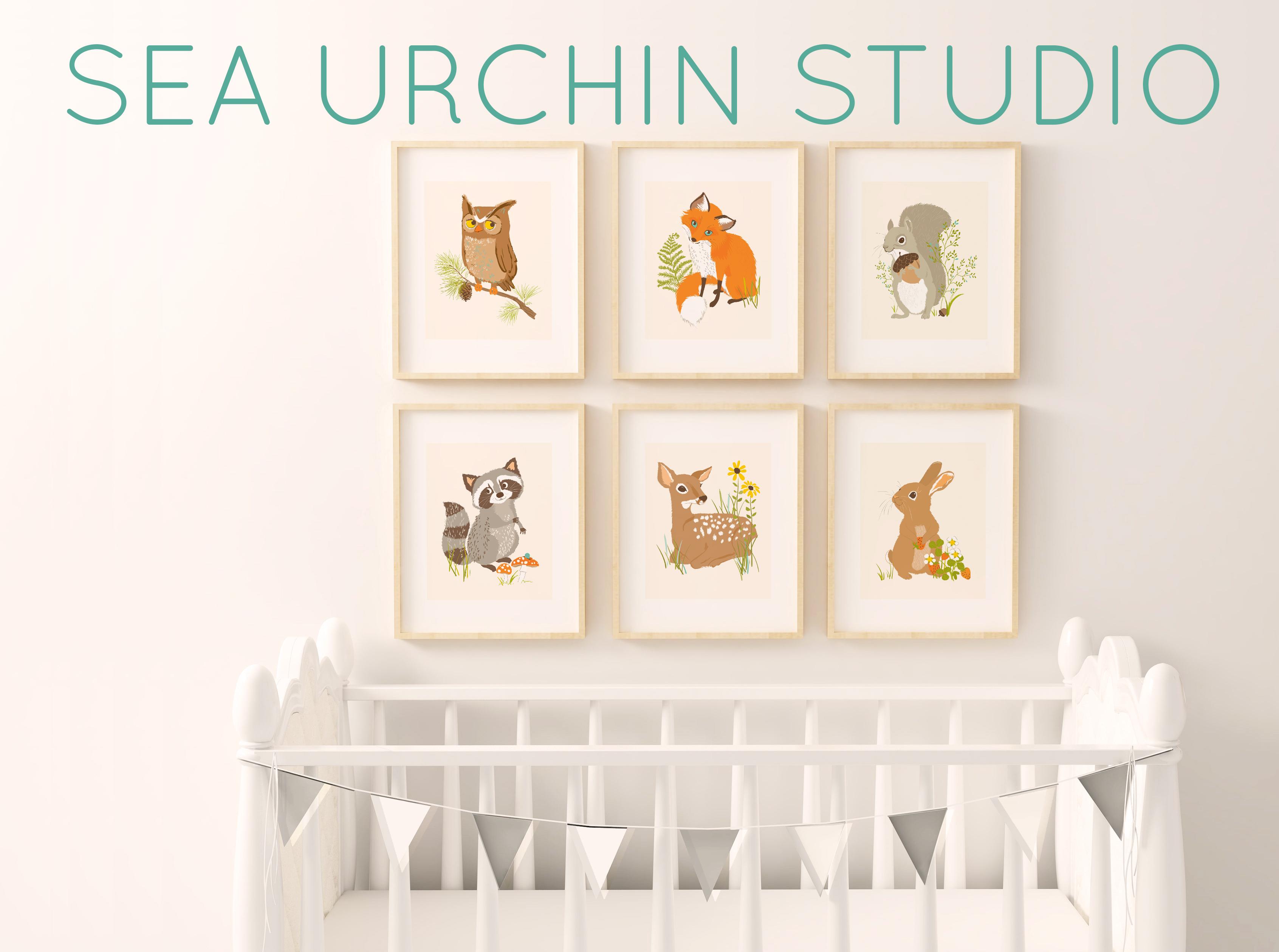 Sea Urchin Studio